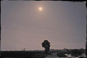 Notturno in risaia 2 - 2014